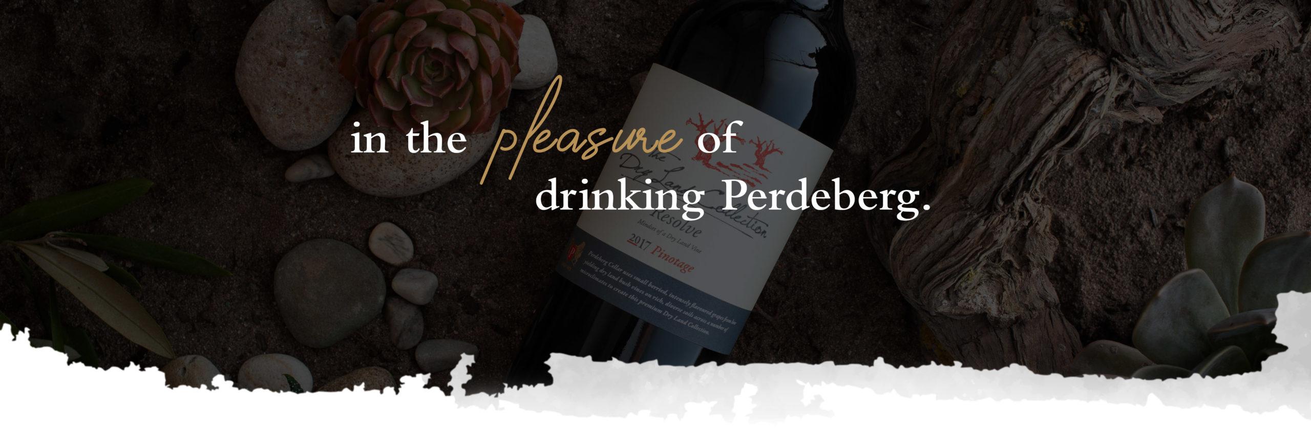 Perdeberg_landing new size