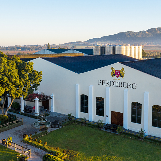 Shining, thriving and innovating: Perdeberg looks to the future as it celebrates 80 years